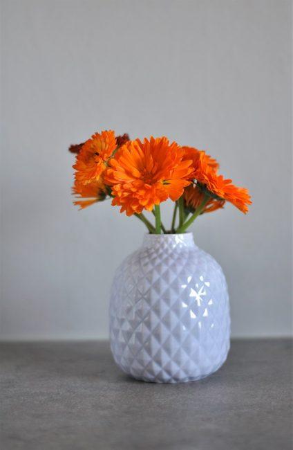 Jarrón sencillo con flores naranjas