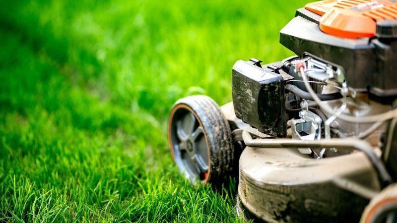 Ahorra alquilando las herramientas de jardinería