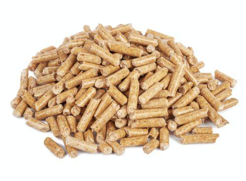 Biomasa en forma de pellets
